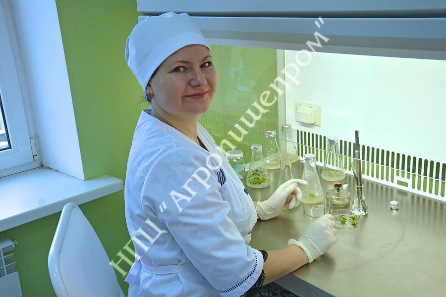 Лаборант исследователь Оксана Александровна Сироткина.