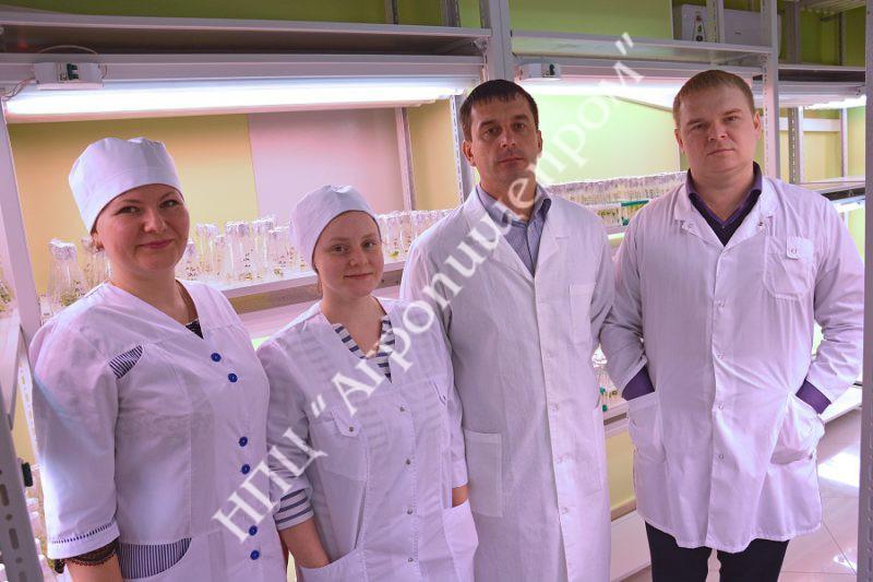 Справа налево: С.А.Колесников, Д.М. Брыксин, О.А.Сироткина, М.И.Кицур.