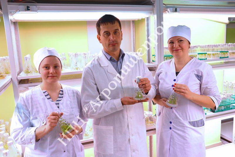 Сотрудники лаборатории в культуральной. Справа налево: О.А. Сироткина, Д.М. Брыксин, М.И.Кицур.