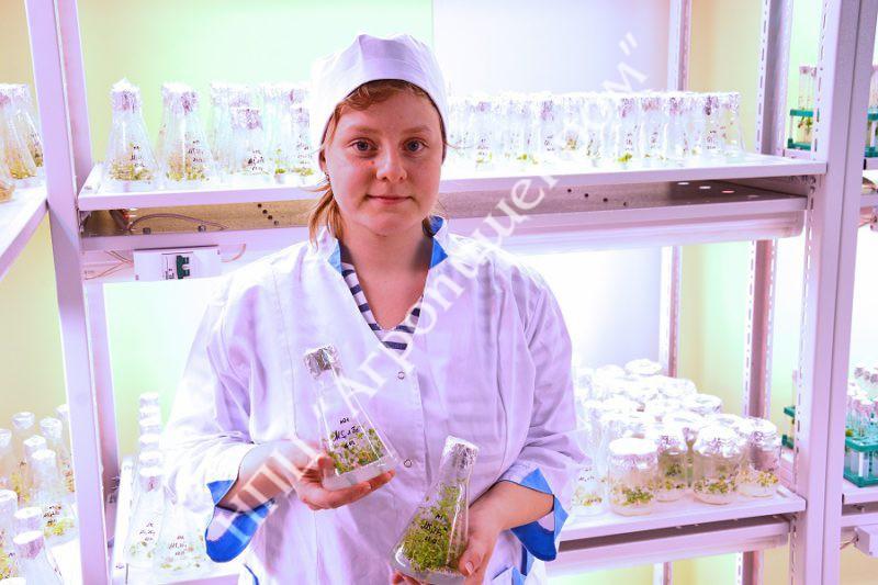 Лаборант исследователь - Мария Игоревна Кицур в культуральной.
