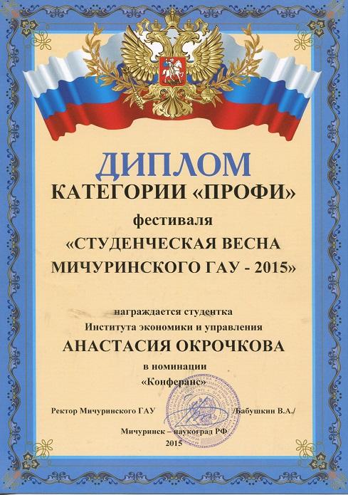 "Диплом категории ""ПРОФИ"""
